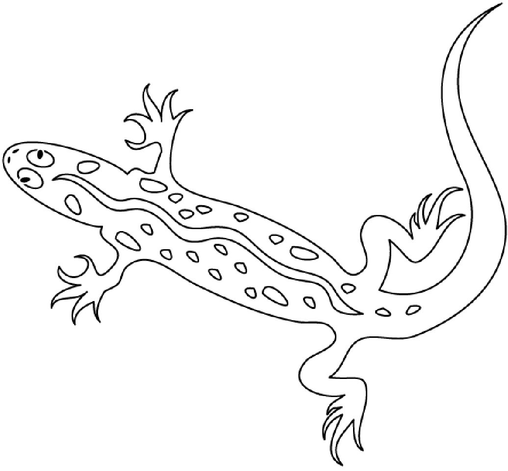 25 Lizard Coloring Pages Compilation FREE COLORING PAGES Part 2
