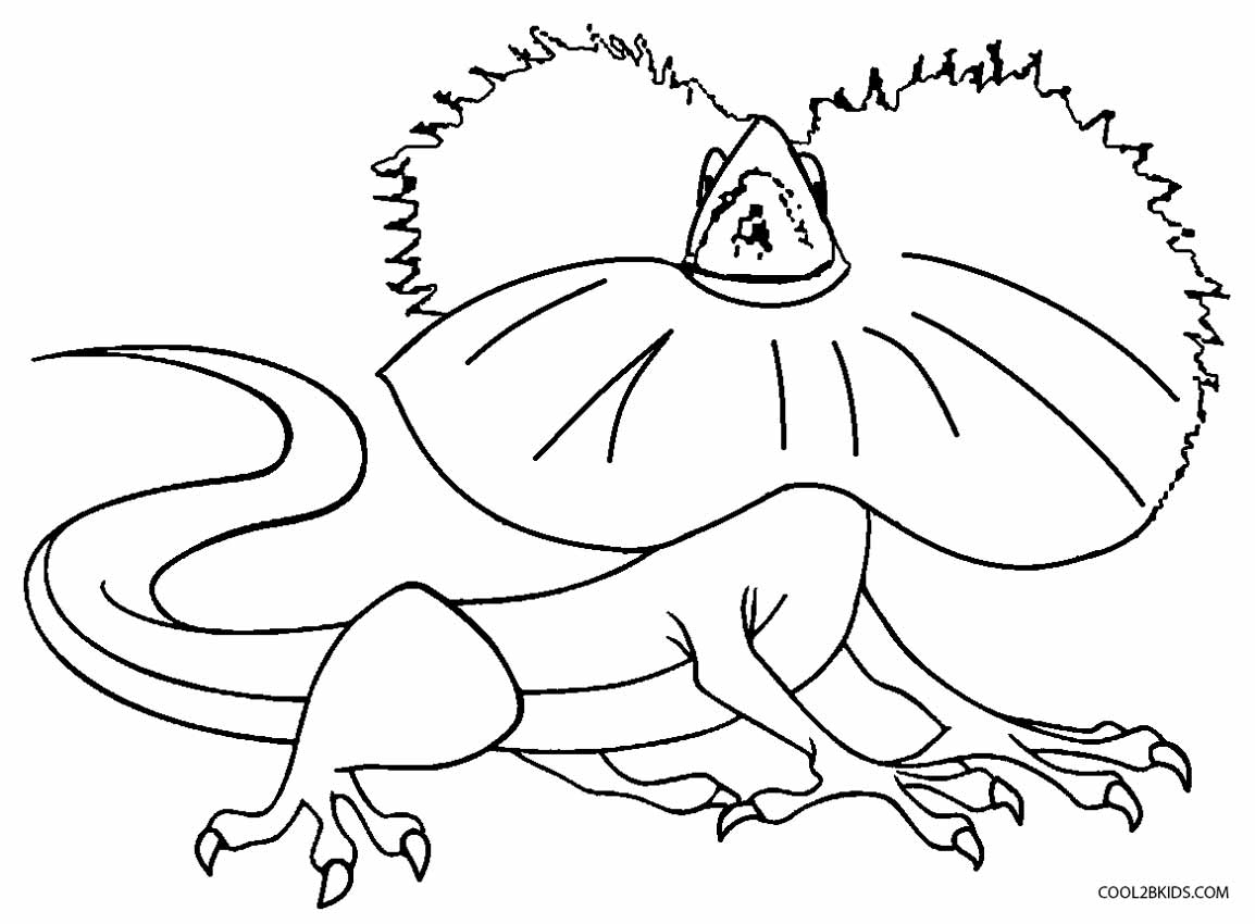 lizard coloring pages - Lizard