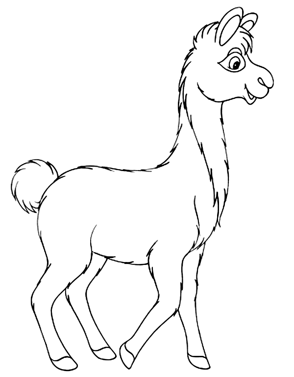 20 Llama Coloring Page Pictures FREE COLORING PAGES
