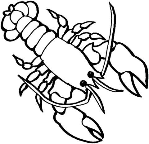 lobster coloring page - lobster 2