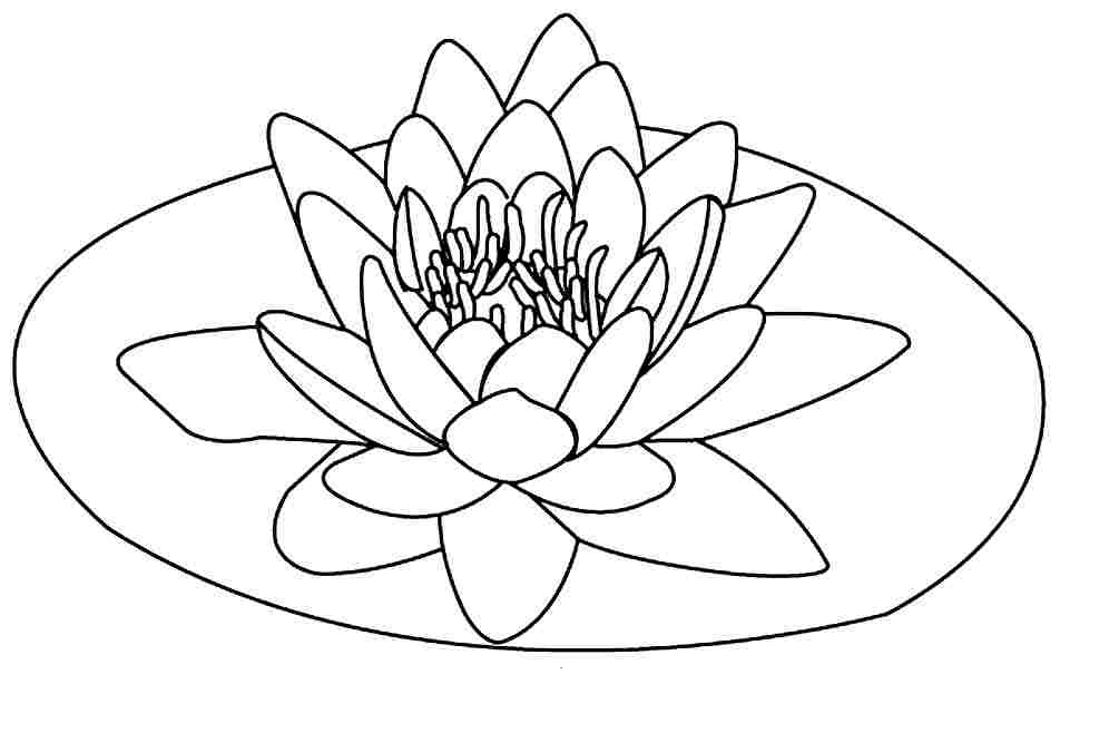 Lotus Flower Coloring Page - Free Printable Lotus Coloring Pages for Kids