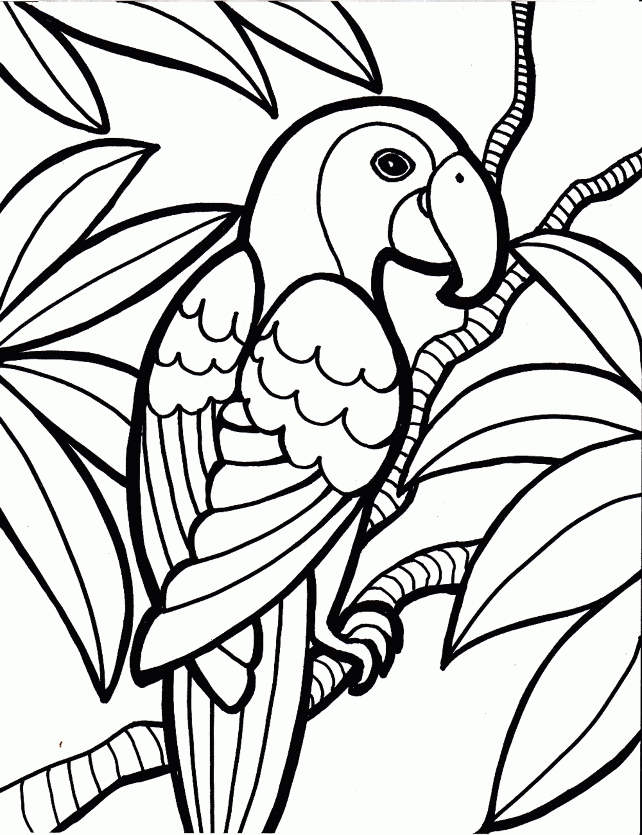 luau coloring pages - luau free coloring pages