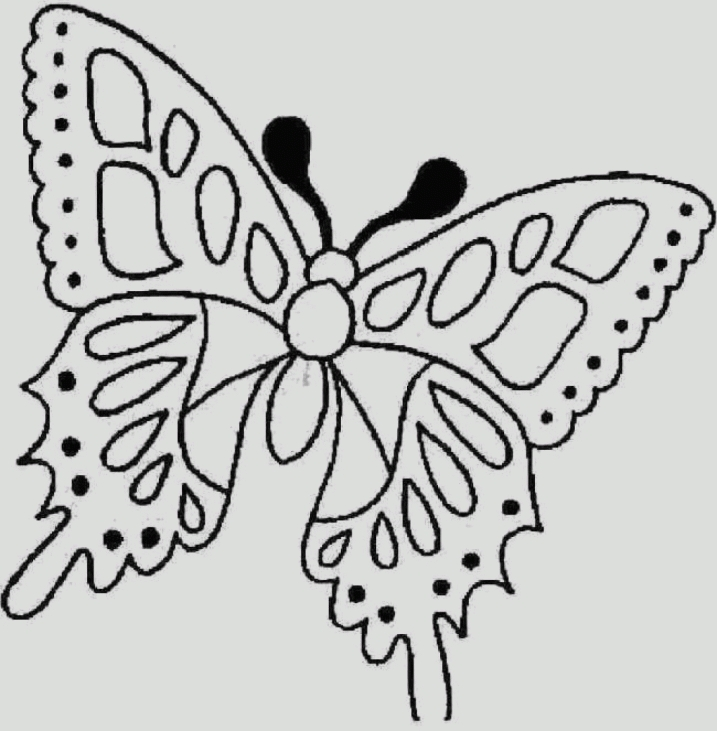 make coloring pages from photos - bee coloring pages f make a photo gallery free online coloring pages