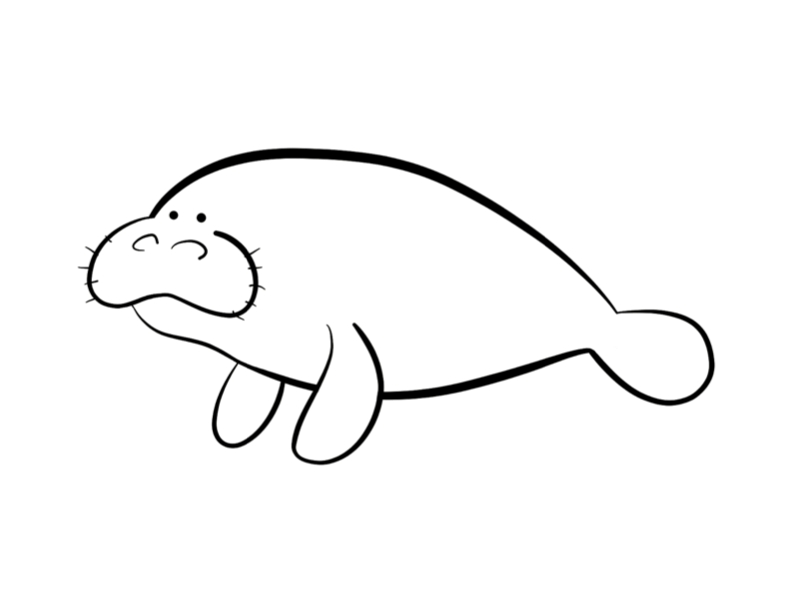 23 Manatee Coloring Page Pictures FREE COLORING PAGES