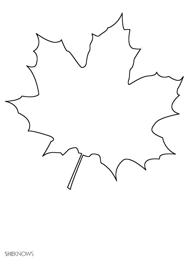maple leaf coloring page - maple leaf