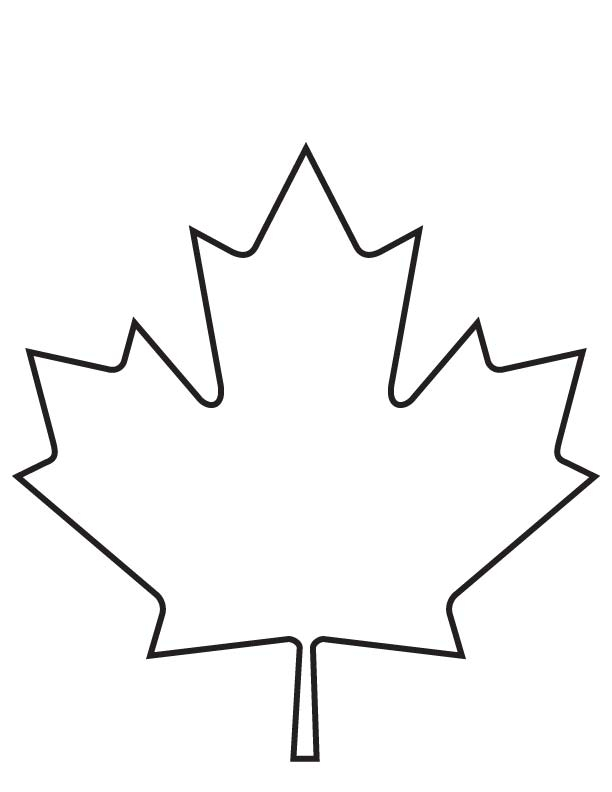 maple leaf coloring page - drawn maple leaf blank pencil and in color