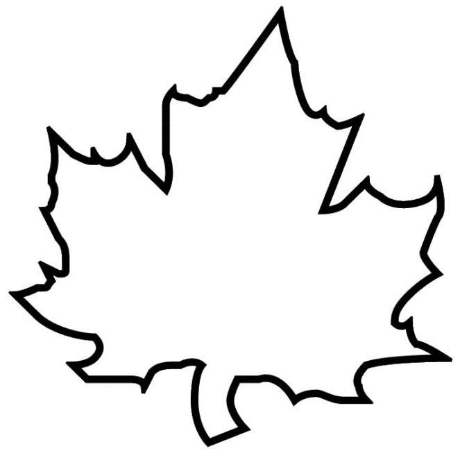 maple leaf coloring page - maple leaf coloring pages