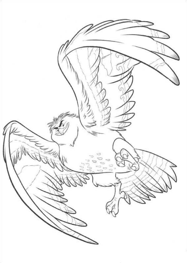 maui coloring pages - maui wordt vogel