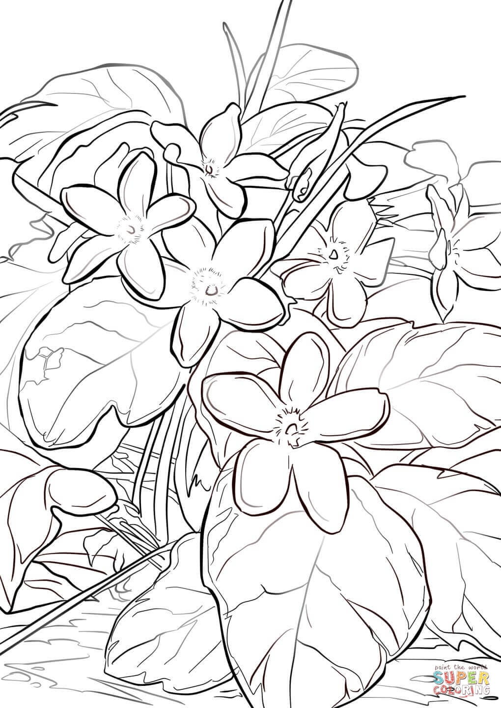 27 Mayflower Coloring Page Printable | FREE COLORING PAGES - Part 3