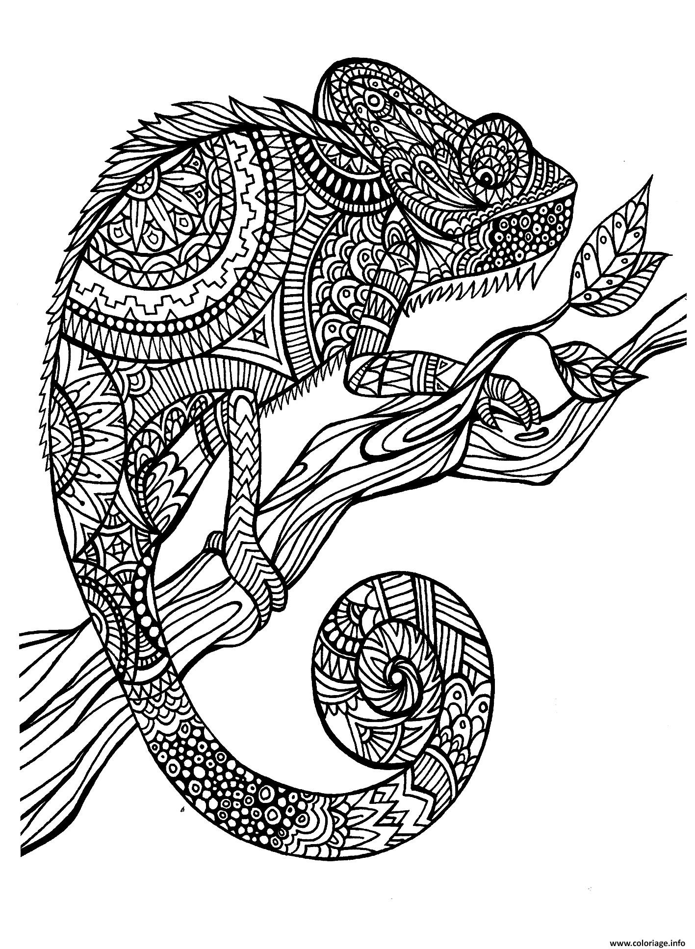 messi coloring pages - adulte animaux cameleon coloriage