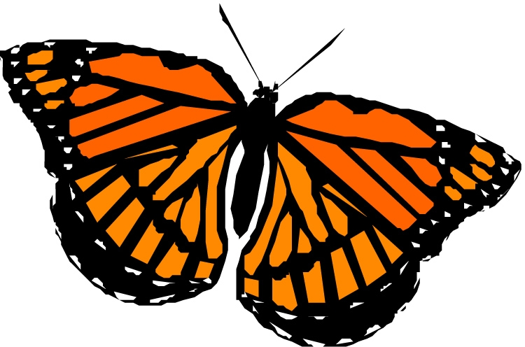 monarch butterfly coloring page - monarch butterfly clipart
