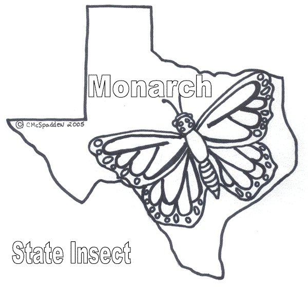 monarch butterfly coloring page - color20
