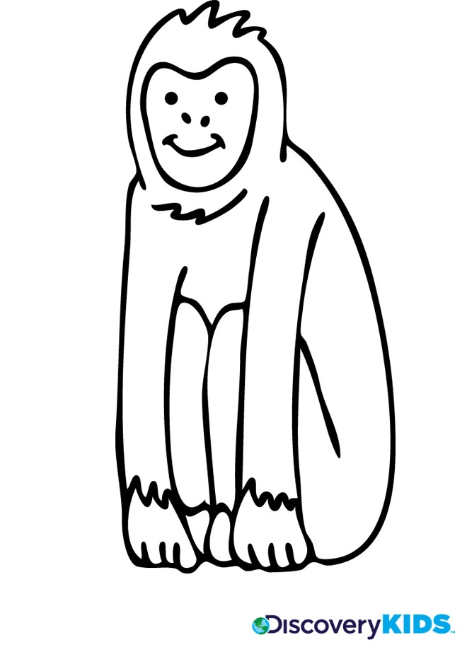 monkey coloring pages - monkey coloring page