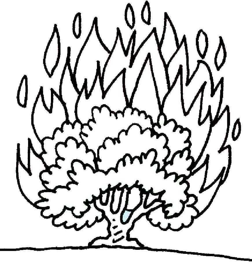 moses and the burning bush coloring page - bible story books