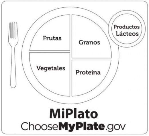 myplate coloring page - s= my plate
