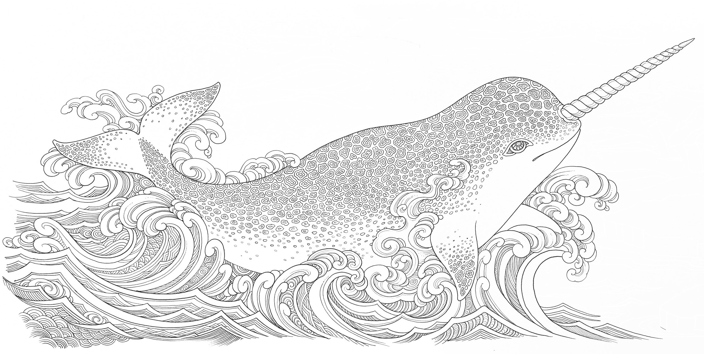 narwhal coloring page - narwhal coloring pages