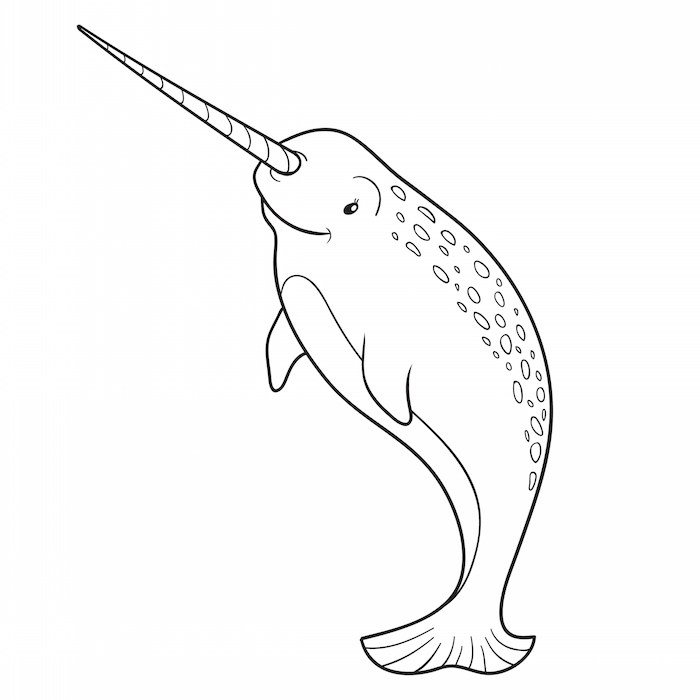 narwhal coloring page - the best 8 dollars i ever spent