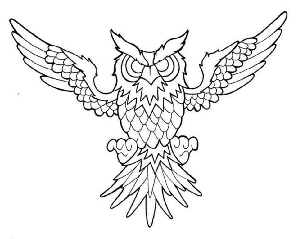 native american coloring pages - American Traditional Owl Colour Free