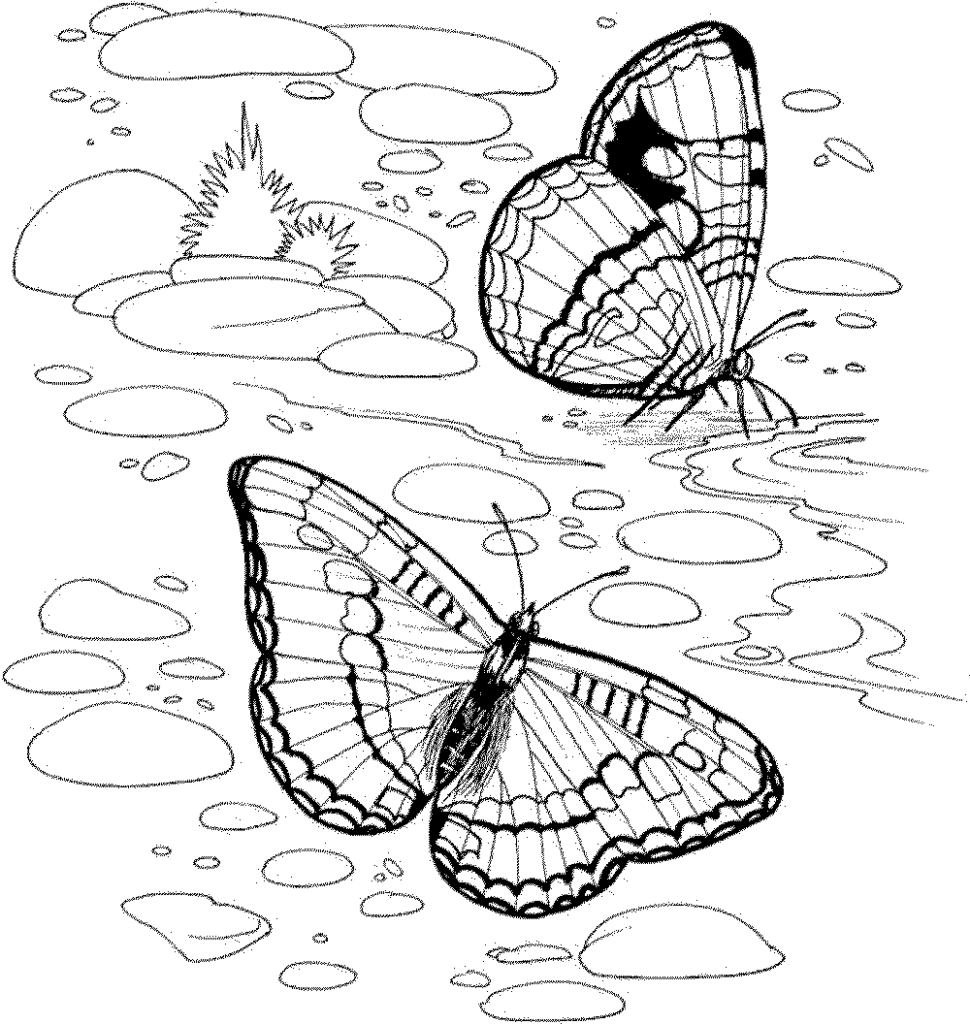 20 Nature Coloring Pages for Adults Compilation | FREE COLORING PAGES