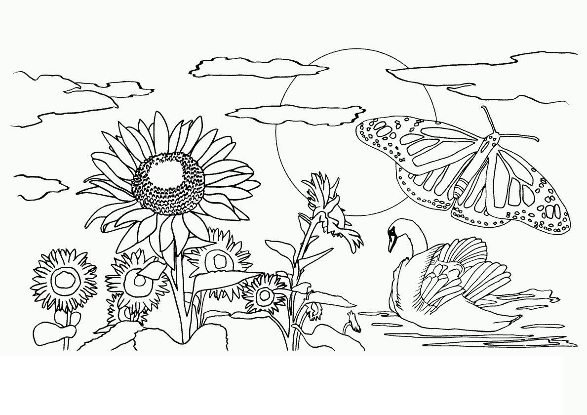 Nature Coloring Pages for Adults - Coloring Pages for Adults Nature Az Coloring Pages