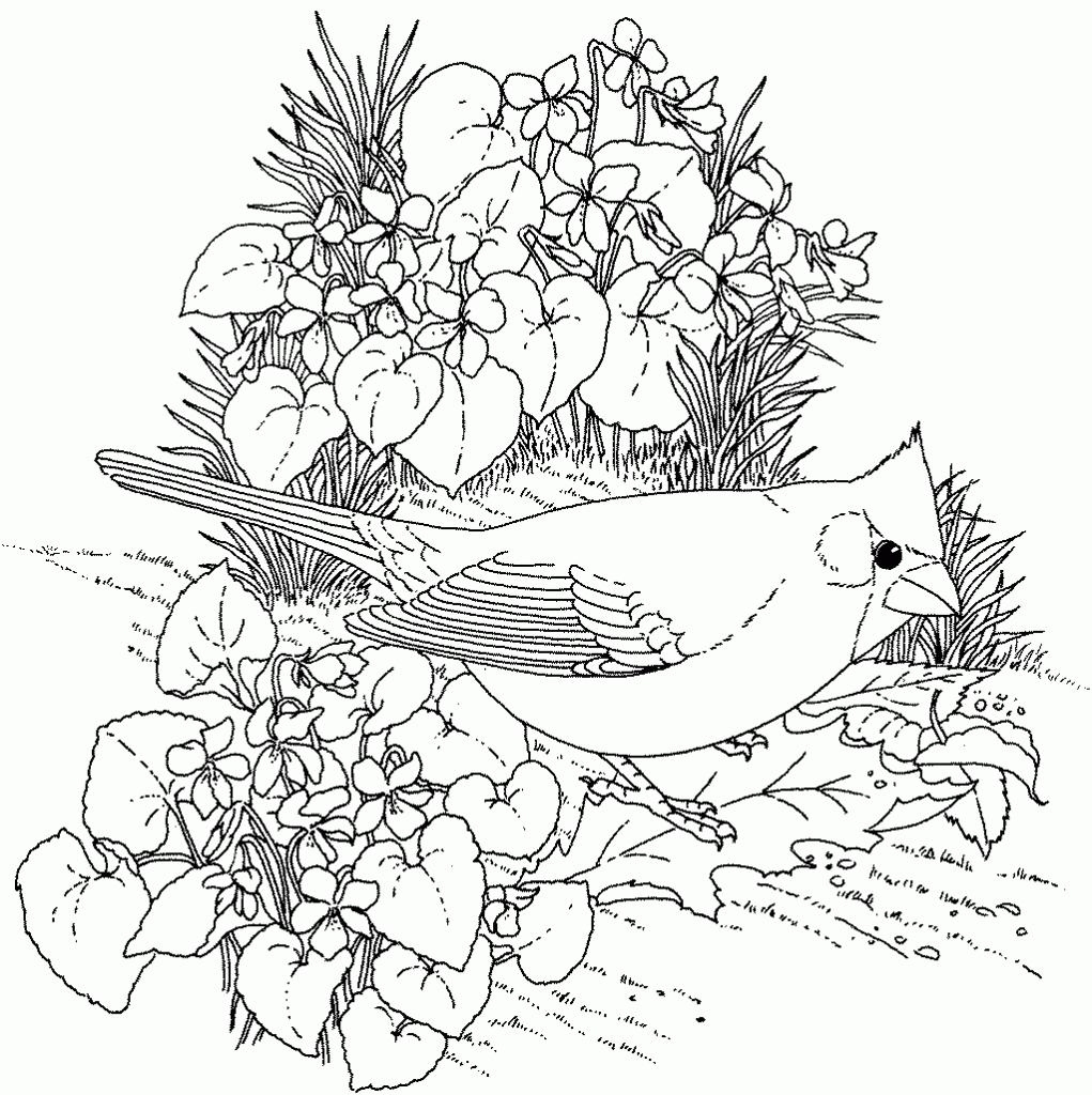 20 Nature Coloring Pages for Adults Compilation | FREE COLORING ...