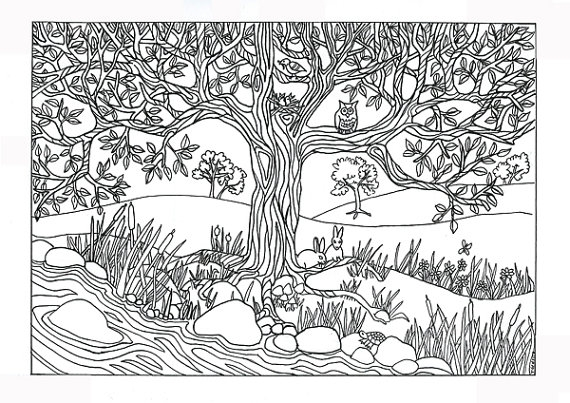 nature coloring pages for adults - tree river nature scene coloring page