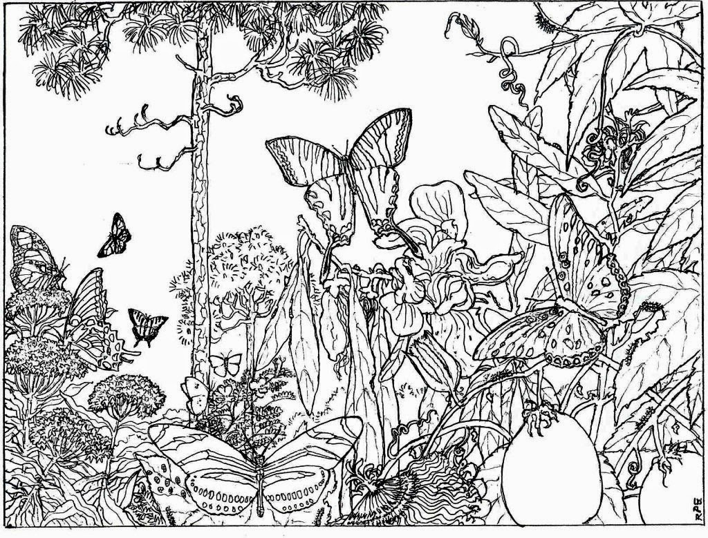 nature coloring pages for adults - nature alive forest hd coloring pages