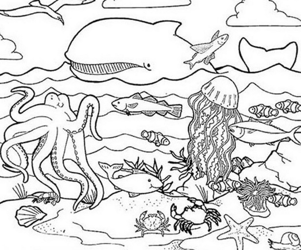 ocean animals coloring pages - ocean sketch templates