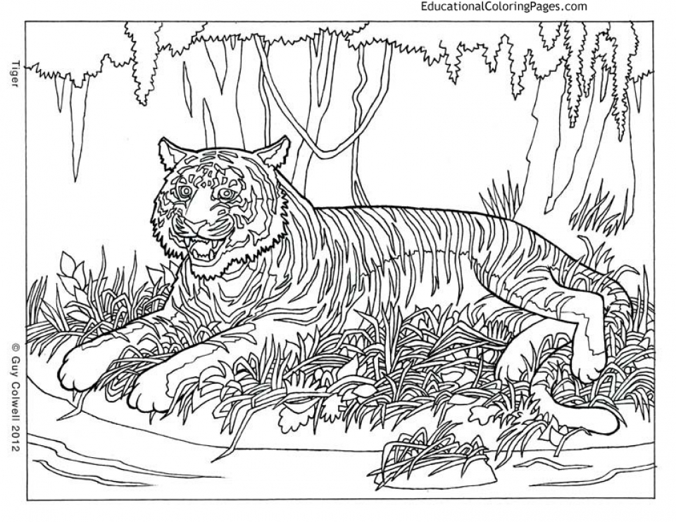 ocean coloring pages for adults - printable difficult animals coloring pages for adults 6756dr3