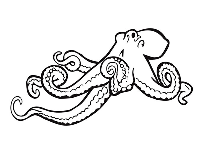 octopus coloring page - image id=1738