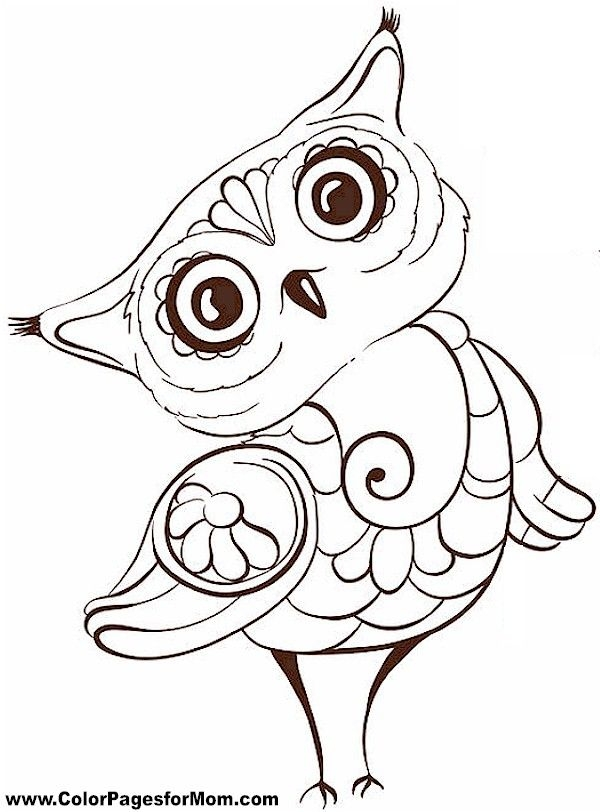 25 Owl Coloring Pages Selection