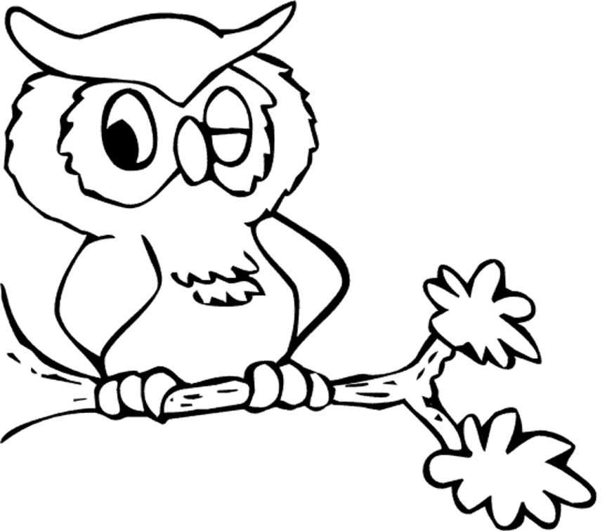owl coloring pages - owl coloring pages