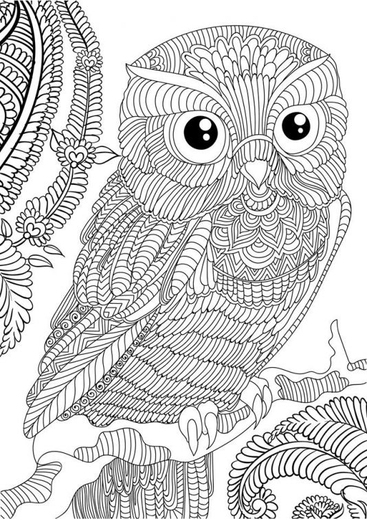paisley coloring pages -
