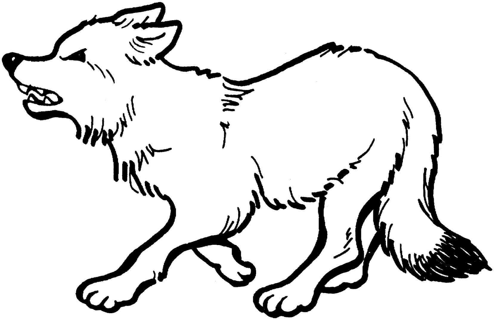 palm tree coloring pages - anime wolf pup coloring pages
