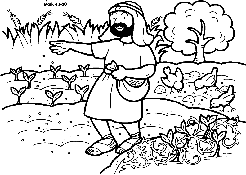 parable of the sower coloring page - sower index
