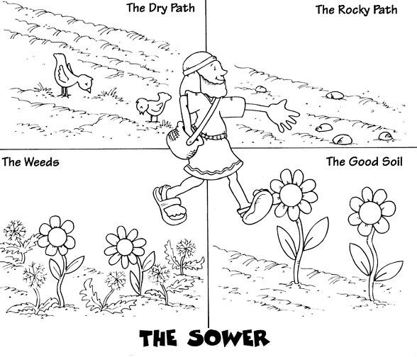parable of the sower coloring page - parable of the sower
