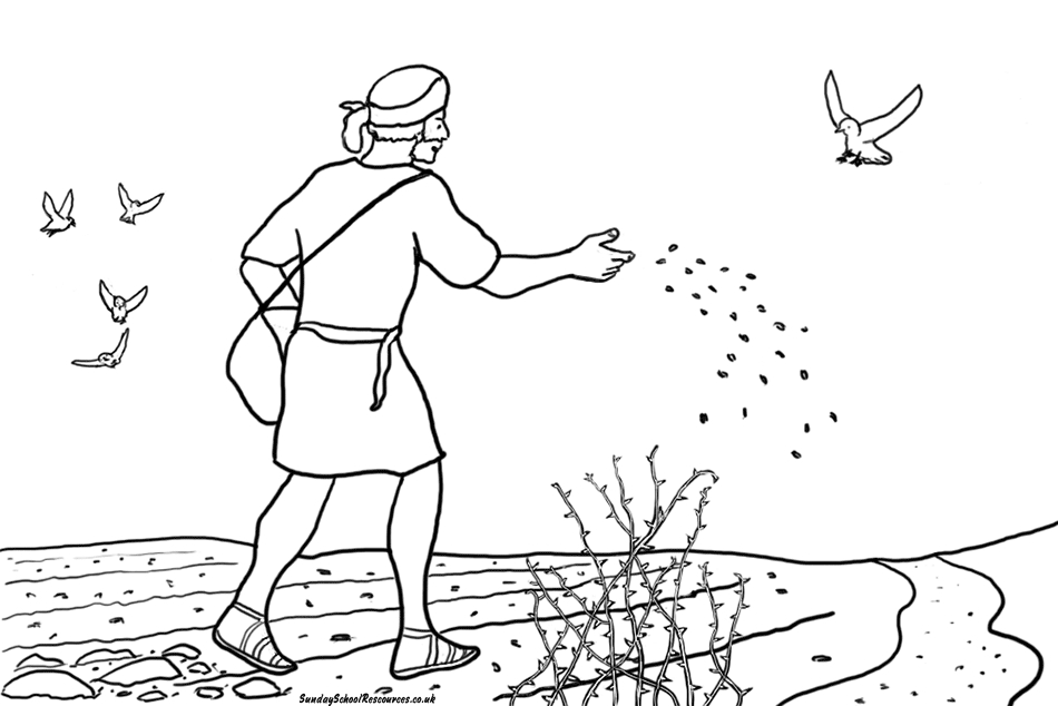 parable of the sower coloring page - coloring parable sower