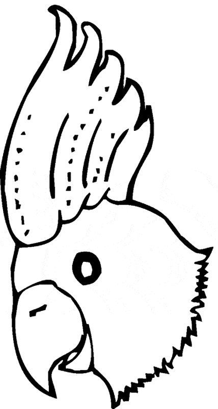 parrot coloring pages - cockatoo coloring 02