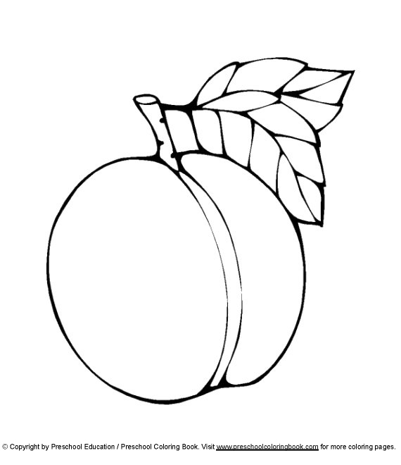 peach coloring pages - peac