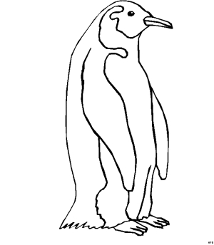 penguin coloring pages - suesser pinguin