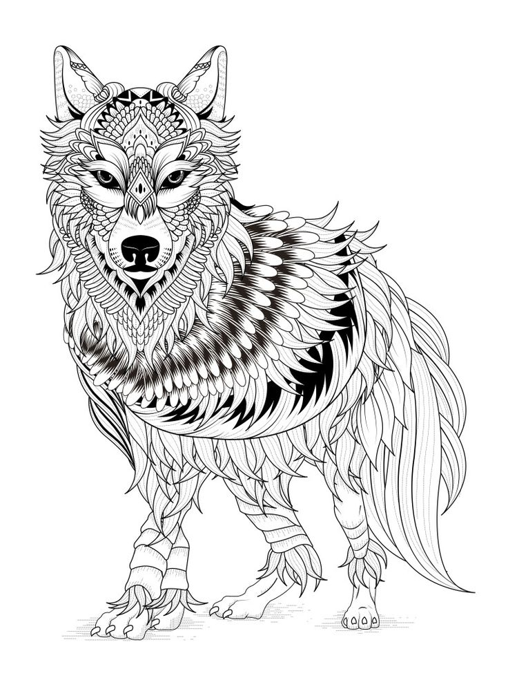 pinterest coloring pages for adults - målarbild djur