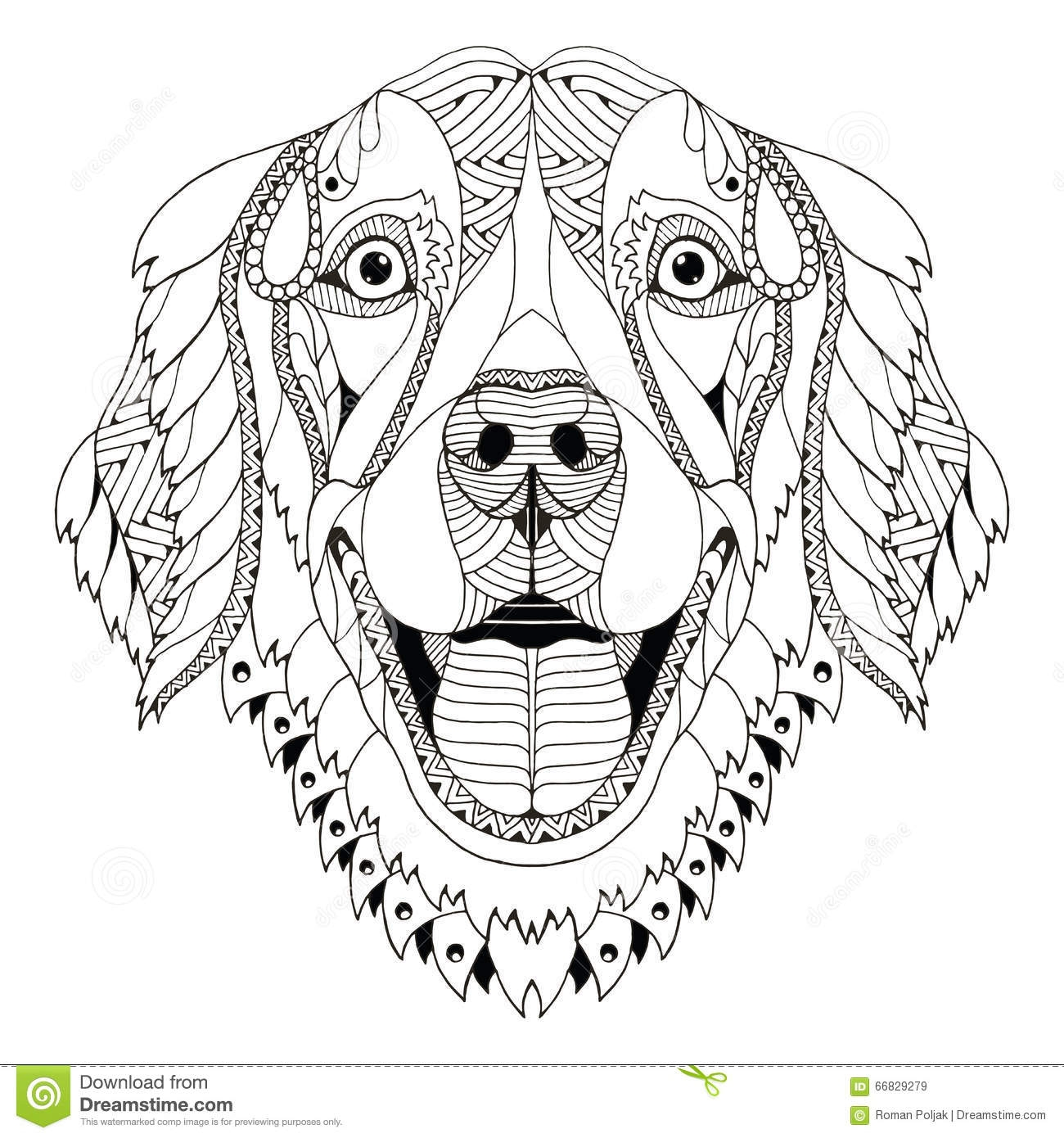 pitbull coloring pages - stock de ilustracin el zentangle del perro del golden retriever estiliz el lpiz principal pulso h image