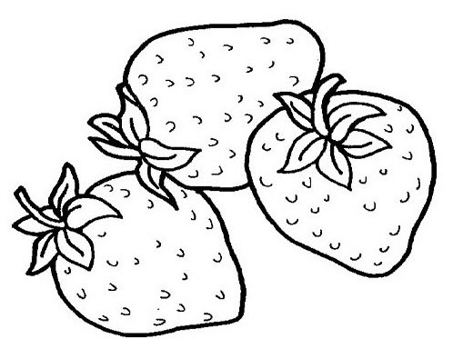pluto coloring pages - tropical fruits coloring pages ideas