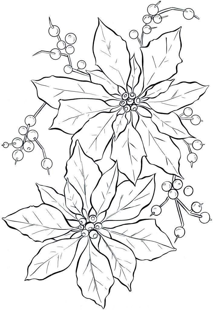 poinsettia coloring page - poinsettia coloring pages
