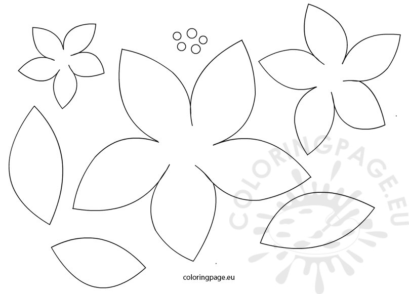 poinsettia coloring page - holiday poinsettias coloring pages sketch templates
