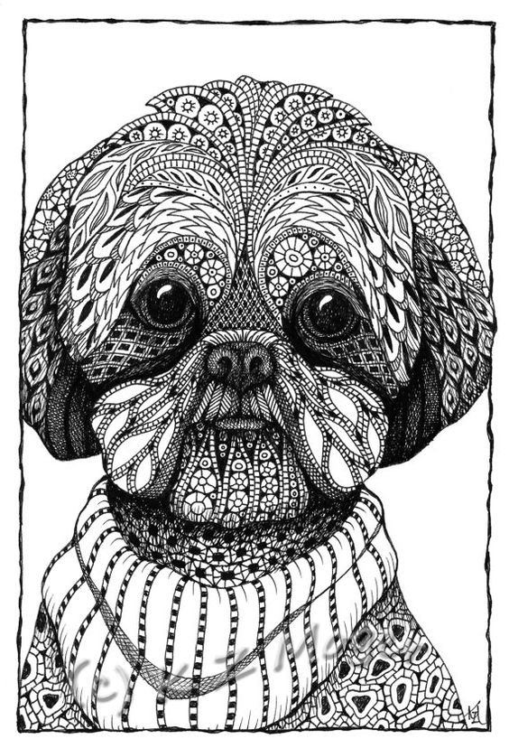 poodle coloring pages -