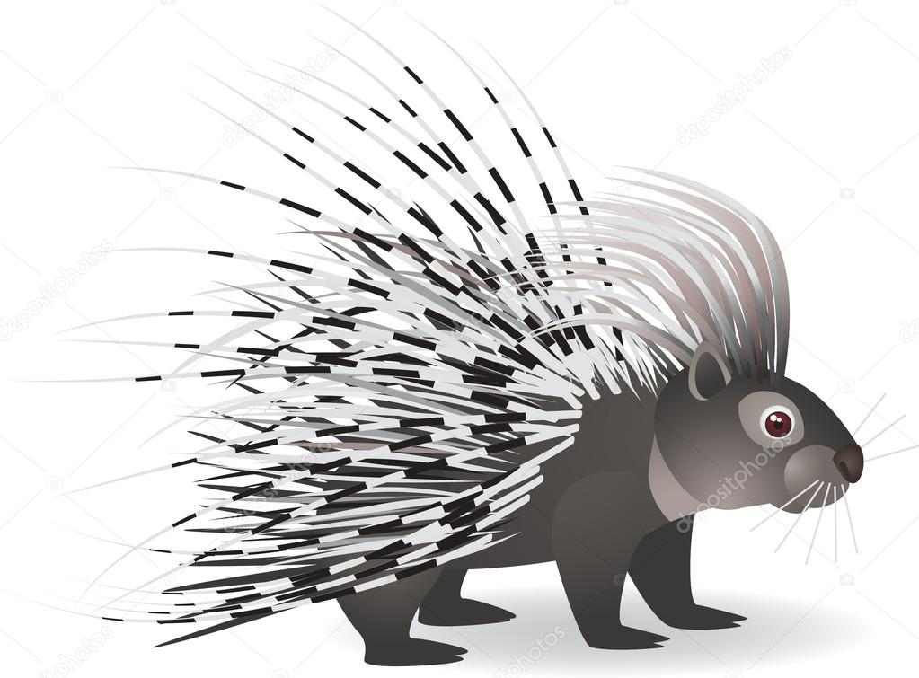 porcupine coloring page - stock illustration cartoon porcupine