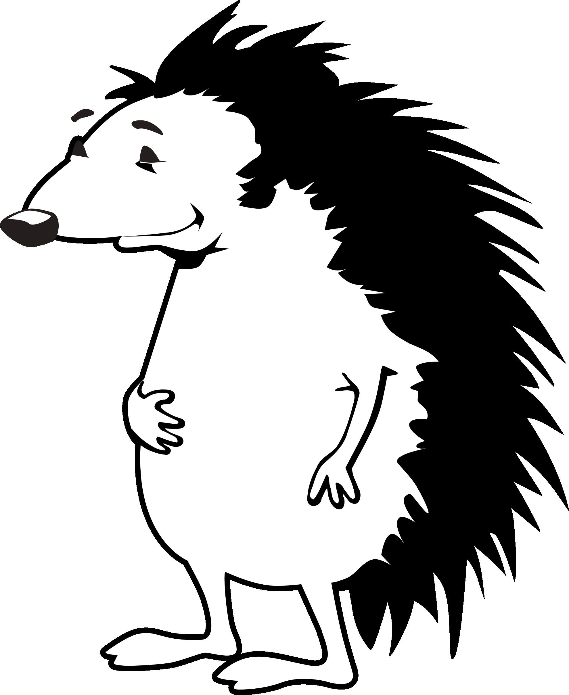 porcupine coloring page - porcupine coloring pages