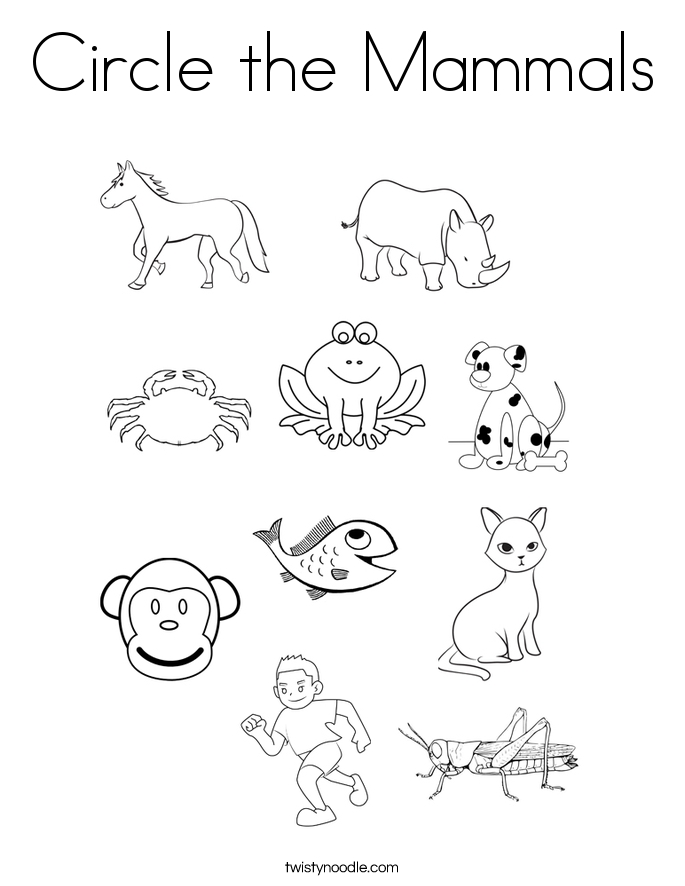 pre k coloring pages - circle the mammals coloring page
