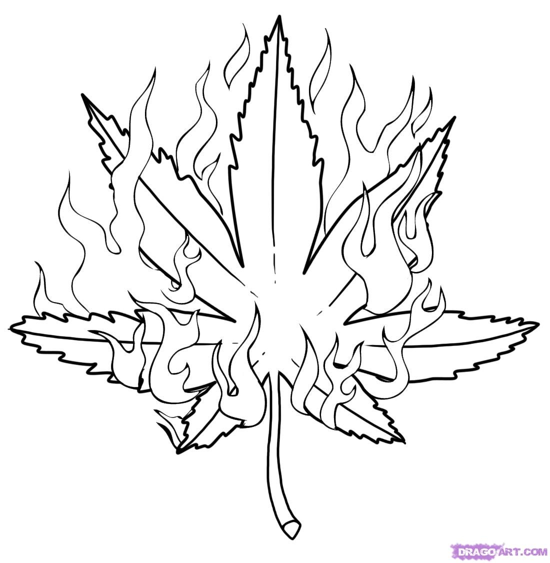 printable bird coloring pages - pot leaf coloring page